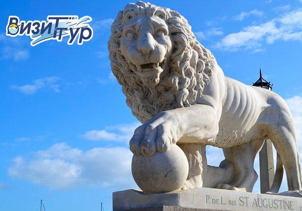 Львов 11